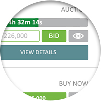 thumbnail of auction sale types